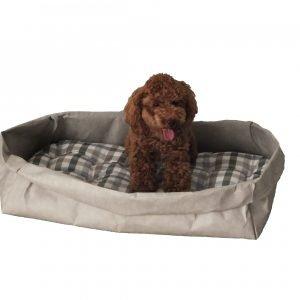 PONGO: cuccia per cani e gatti in fibra di cellulosa colore Grigio, con cuscino anallergico removibile in cotone a quadretti, Made in Italy, Limac Design®.